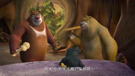 熊出没:熊大拿出了骨头, 大黑还是无精打采, 这是咋回事