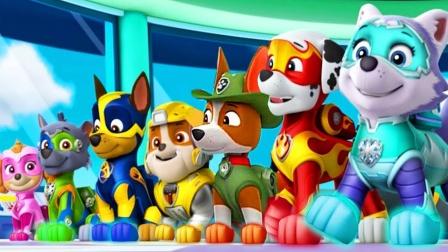 汪汪队玩具故事:超精彩!狗狗们这次任务是什么?能顺利完成吗?