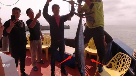 5天3夜南海钓鱼返航了,钓友都迫不及待了,看看这条大鱼多重