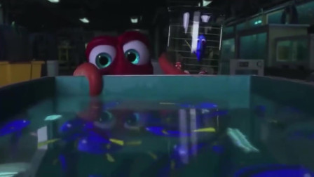 海底总动员:多莉找到家人了,她好开心呀,她要去找爸爸妈妈了