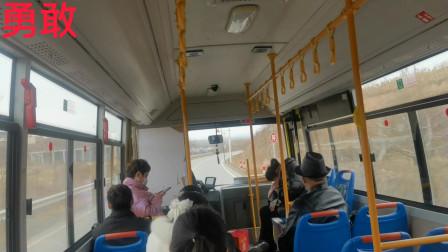 公交车视角,一起看山东胶东风光,这里主产黄金与梨