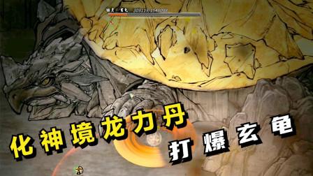 鬼谷八荒#33:吃化神龙力丹,打爆玄龟!
