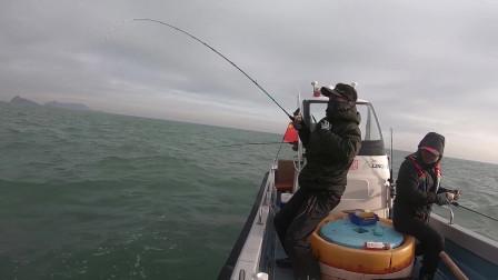 钓海鲈的黄金季节到了,出海就是狂拉的节奏