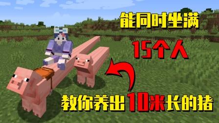 我的世界mod:10米长的猪你见过吗?能同时坐满15个人