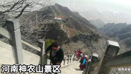 安康旅游群西安河南5日游(下集)2021年3月18号步步安康摄制
