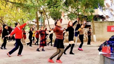 高原情歌《次真拉姆》入门藏舞,广场上大妈都能跳