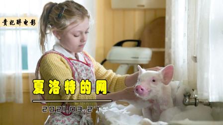 农场的呆萌小猪,为了不被做成烤肉,在蜘蛛的帮助下变成网红猪