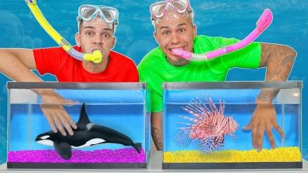 未知鱼缸挑战游戏:老外又要作死了,隔着屏幕都心惊!