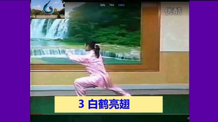 高佳敏24式太极拳 3白鹤亮翅