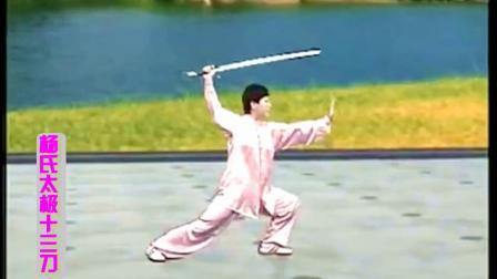杨氏太极十三刀 古筝音乐《红颜旧》