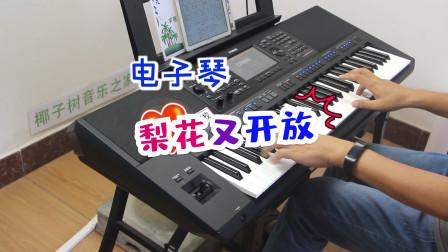 电子琴演奏《梨花又开放》