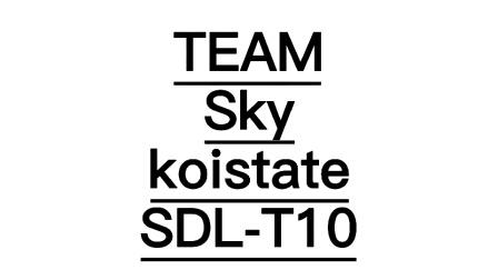 koistateSDL-T10 Battery empty