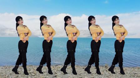 玖月广场舞:没有共产党就没有新中国 动作分解 简单的水兵舞