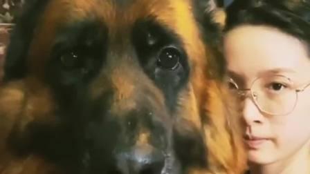 女主对狗子说:黑色麻袋喜欢吗?我来套你的头了!