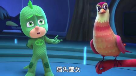 睡衣小英雄:小鸟喜欢猫头鹰女,猫头鹰女很开心,想养小鸟当宠物