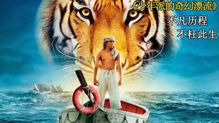 9.1分,少年和老虎海上遇难,每天都要喂老虎,才能保命!