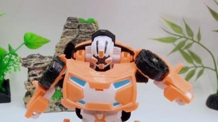 托宝兄弟X变形汽车人玩具!