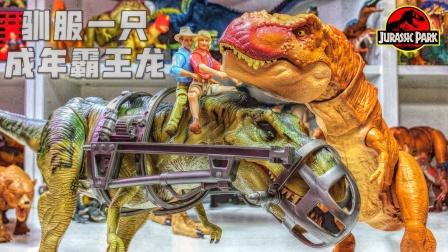 你知道如何驯服一只霸王龙吗?侏罗纪世界恐龙暴虐龙奥特曼工程车