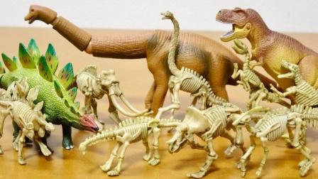 恐龙玩具故事:哇塞!恐龙化石究竟长什么样呢?一起看看吧!