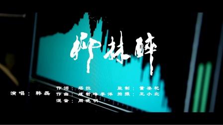柳林醉(陕西柳林酒业形象歌曲个人版)