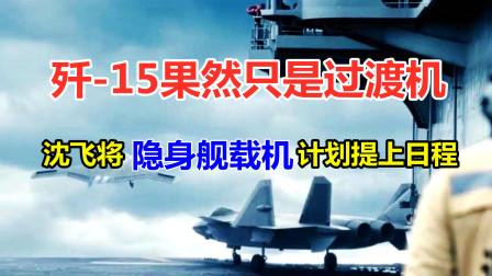 歼15果然只是过渡,沈飞将隐身舰载机计划提上日程,中型机是首选