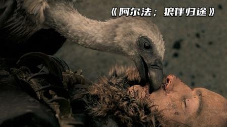 男孩被家人抛弃,意外救下一只野狼,为了报恩野狼一直保护他