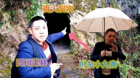 四川渠县神秘賨人谷,古代賨人蜗居在悬崖洞穴,大叔解开神秘面纱