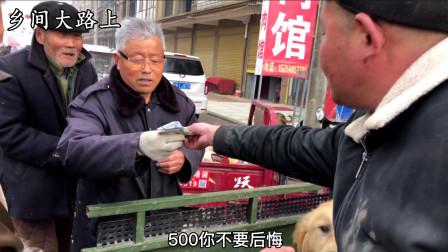 450块,农村大爷把50斤重金毛卖了,拿到钱那一刻高兴,可买好吃