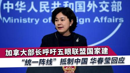 加拿大呼吁五眼联盟联手对付中国,华姐:找兄弟壮胆也没什么用