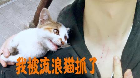 本想收养这只流浪猫,结果被猫挠了脖子,去医院打了五针