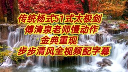传统杨式51式太极剑傅清泉老师慢动作步步步清风重配乐幽玄上传