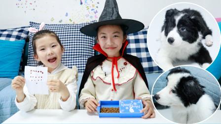 狗狗故事:小五肚子饿了,艾米儿魔术师把苏菲娅的画变成了狗粮