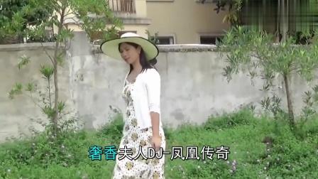 凤凰传奇DJ10