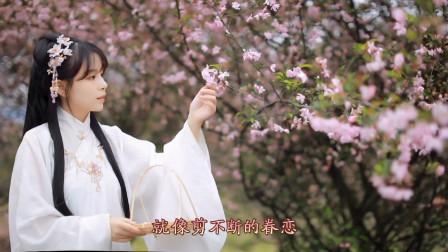 婧琪《等你在花开的春天》古风DJ版,旋律动感,给你好看!