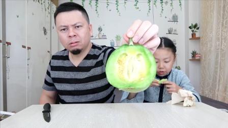 """父女试吃""""绿宝甜瓜"""",有股哈密瓜的香味,超级甜!"""