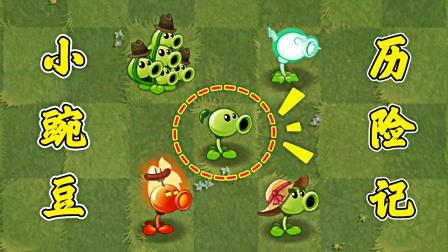 小豌豆历险记:植物们走进时空之门,又会去哪个世界呢?