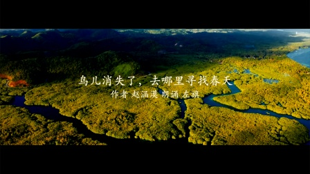 电视散文:鸟儿消失了,去哪里寻找春天(吴世康纪录片工作室)