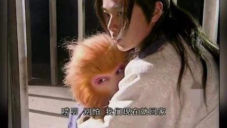 《宝莲灯》第29集:孙悟空太惨了,被二郎神折磨成这样