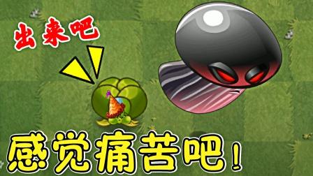 植物大战僵尸,桔梗气球花:感受痛苦吧!
