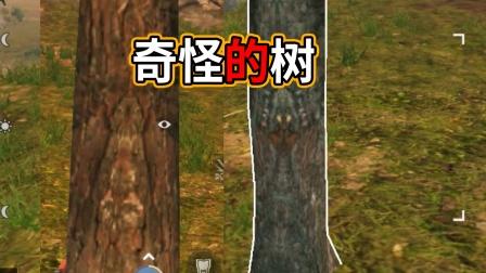 明日之后:相传在晴空麦田的树木,有1%的概率刷出鬼新图案!