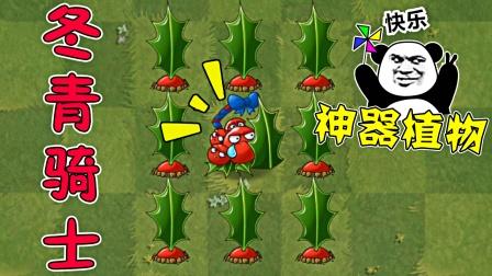 植物大战僵尸2:神器冬青骑士,一株能攻能防的植物!