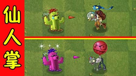 植物大战僵尸2:二代仙人掌的特性,气球僵尸原来这么高!
