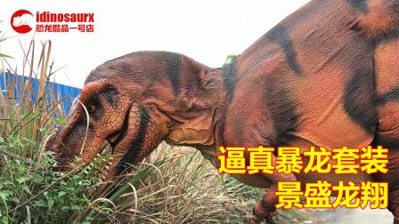 逼真的恐龙演艺套装 - 人穿戴的仿真暴龙服