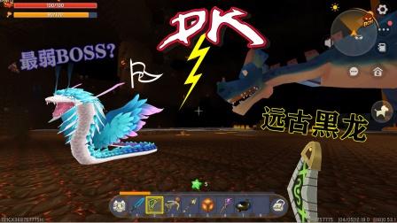 迷你世界:羽蛇神和黑龙谁更厉害?把羽蛇神带入地狱,让它俩PK