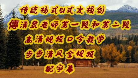 传统杨式51式太极剑高清第一段和第二段全视频配字幕傅清老师口令教学