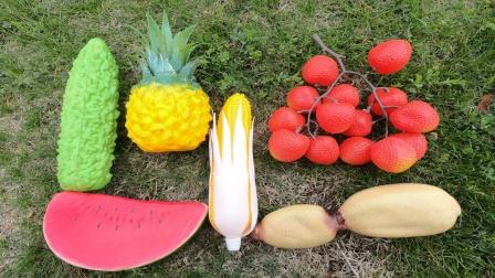 跟着老虎先生一起去寻找菠萝等美味的水果蔬菜
