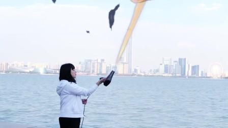 看我这吹风机狠不狠把飞机都吹炸了,还把飞碟吓跑了