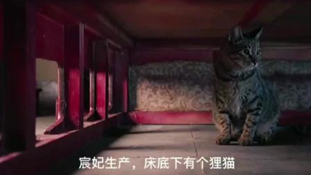 《大宋宫词》版狸猫换太子,女人之间的宫斗太可怕了!