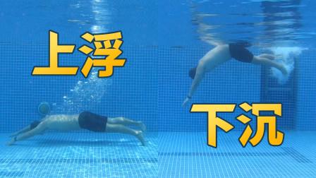 在泳池怎样优雅地下潜和上浮?|泳池老油条5|梦觉教游泳