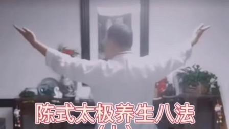 陈氏太极养生八法-教学